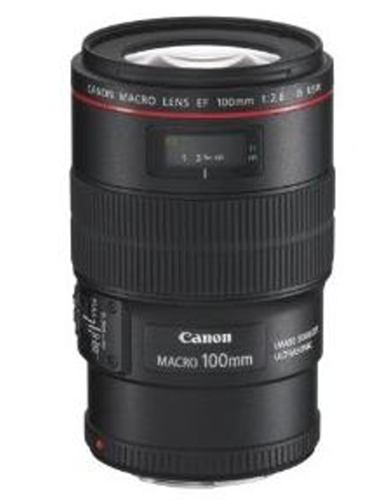 Canon EF 100mm 2,8L Macro IS USM